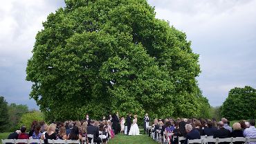 Image of an outdoor wedding at The Powelton Club